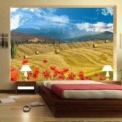Fototapeta - Jesienny krajobraz
