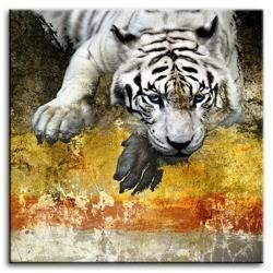 "Obraz ""Wild Nature"" reprodukcja 80x80 cm"