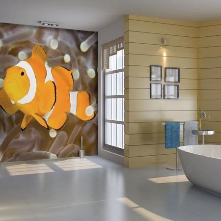 Fototapeta - Finding Nemo