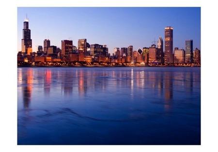 Fototapeta - Icy Downtown Chicago