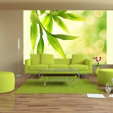 Fototapeta - Zielone liście bambusa