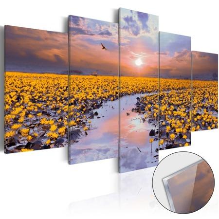 Obraz na szkle akrylowym - Rzeka światła [Glass]